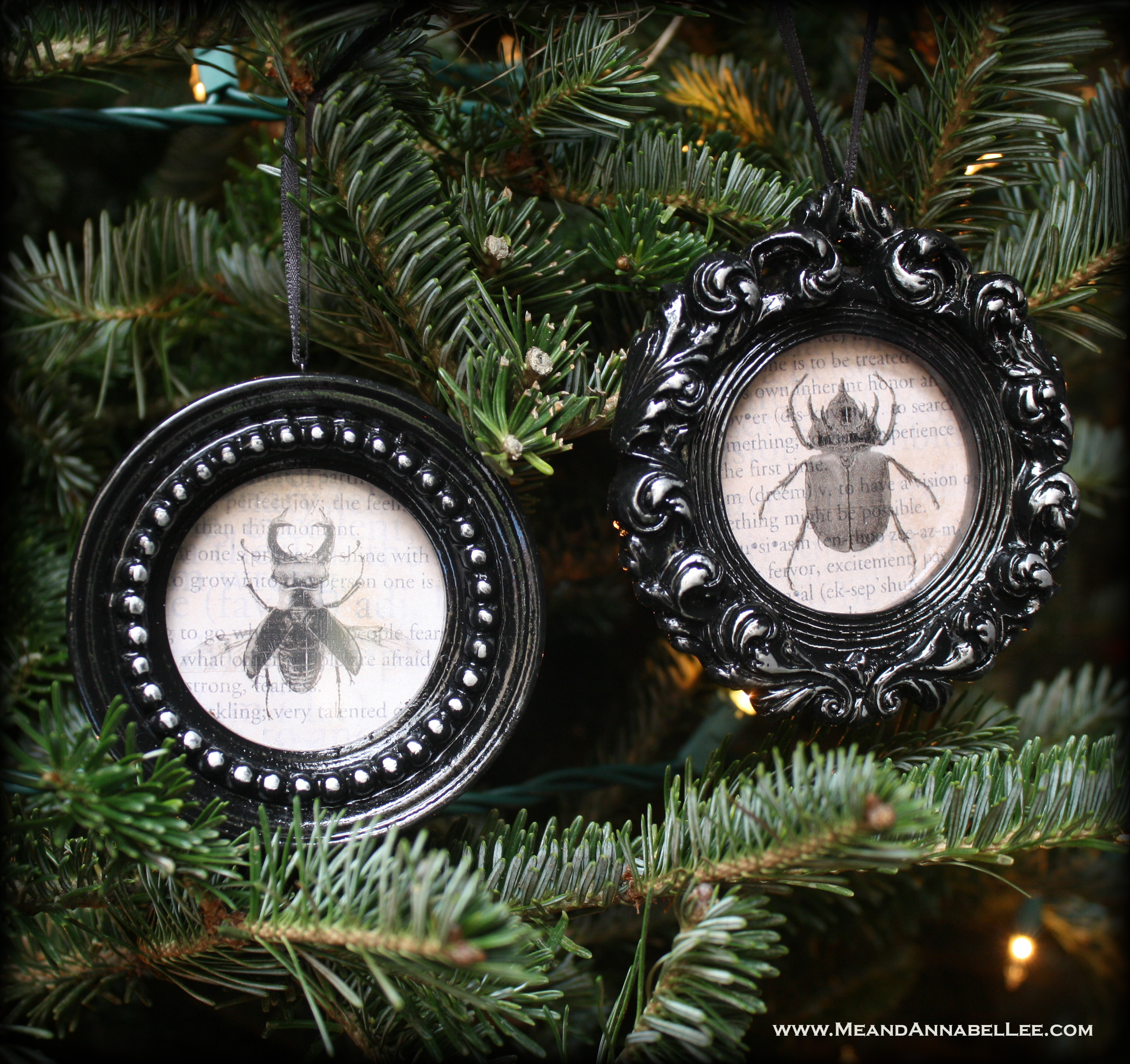 Black Gothic Christmas Ornaments Framed Insects Me And